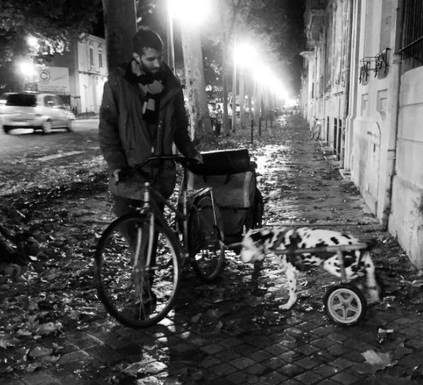 Le traveler espagnol et le dalmatien à vélo